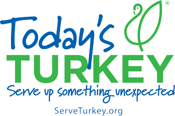 Todays Turkey Logo with Website rgb